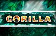 Gorilla — бесплатно играйте на автомате в игровом зале Вулкан