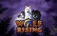 Запускайте на реальные деньги слот Wolf Rising в онлайн казино Вулкан